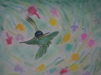 Humming Bird 08
